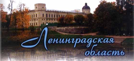 Телефонный Справочник 2009 Город Новокузнецк